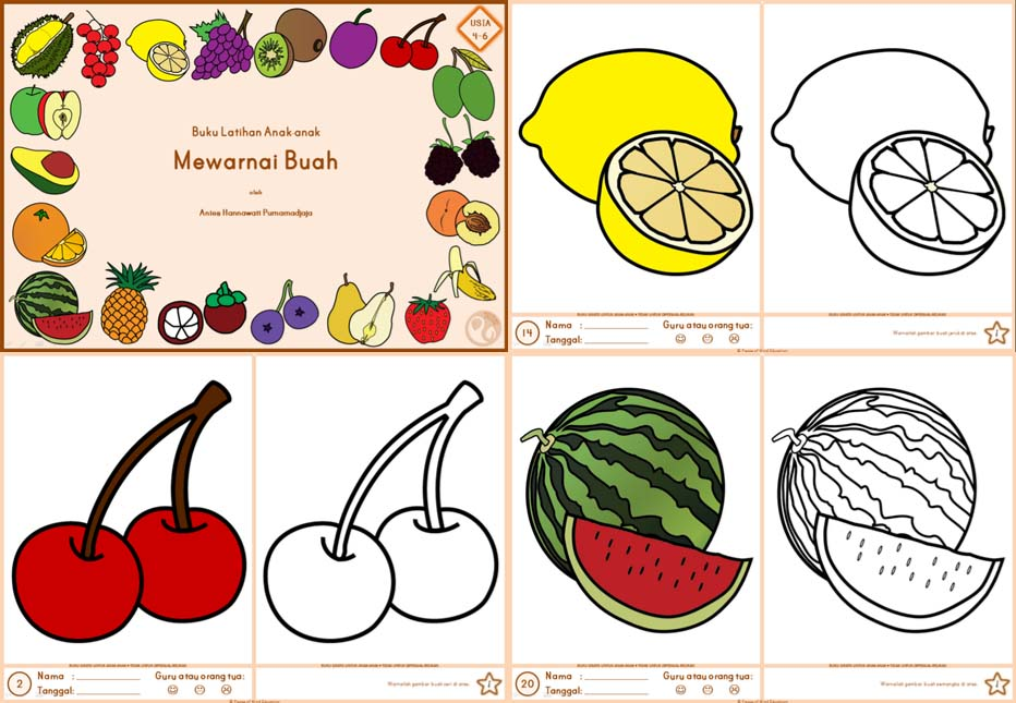 2012 014 Mewarnai Buah Usia 4 6 Peace Of Mind Education Indonesia